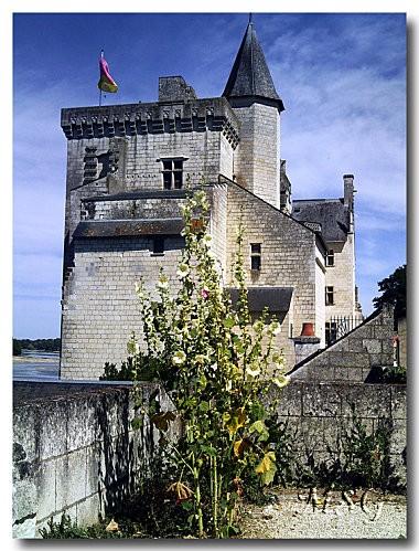 Château Montsoreau 3