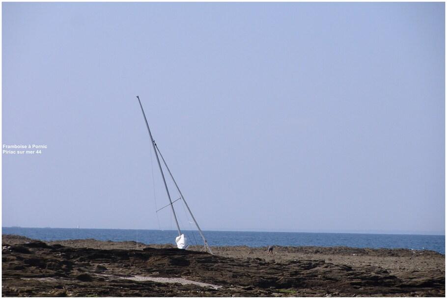 Piriac sur Mer 44