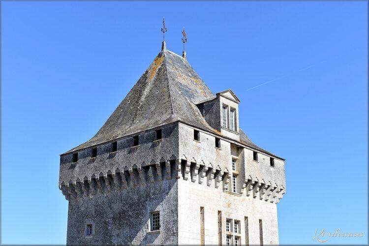Photos château de la Roche-Courbon - la tour