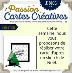 Passion Cartes Créatives#567 !