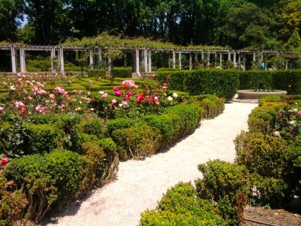 Parc Serralves ( Porto)