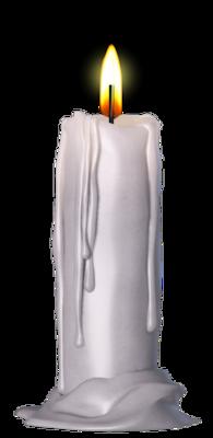 Amaranthine   tube de Shéokate