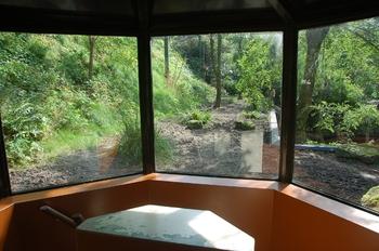 dierenpark emmen d50 062