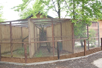Parc animalier Bouillon 2013 enclos 283