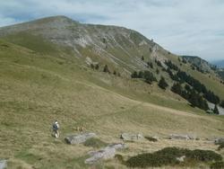 Col de l'Aouet (Barousse - 65)
