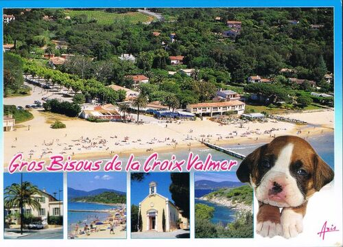http://team.ratigan.free.fr/blogsev/postcrossing/reception/cr47.jpg