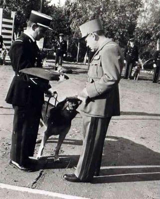 Gamin médaillé de la gendarmerie nationale