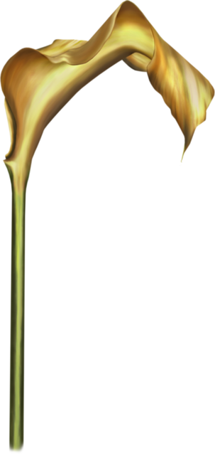 Barnali Bagchi tubes