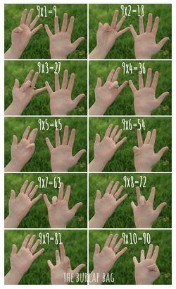 Multiplier sur les doigts