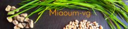 Miaoum - VG : j'ai testé !