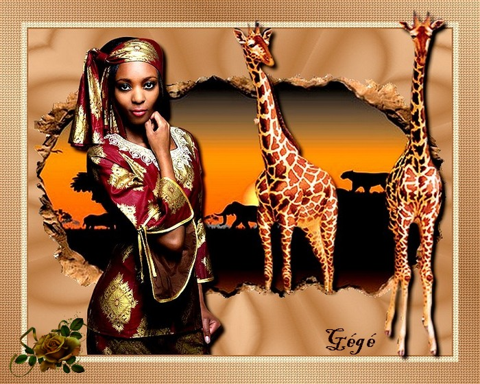 Les giraffes