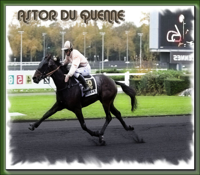 Astor Du Quenne  (1)
