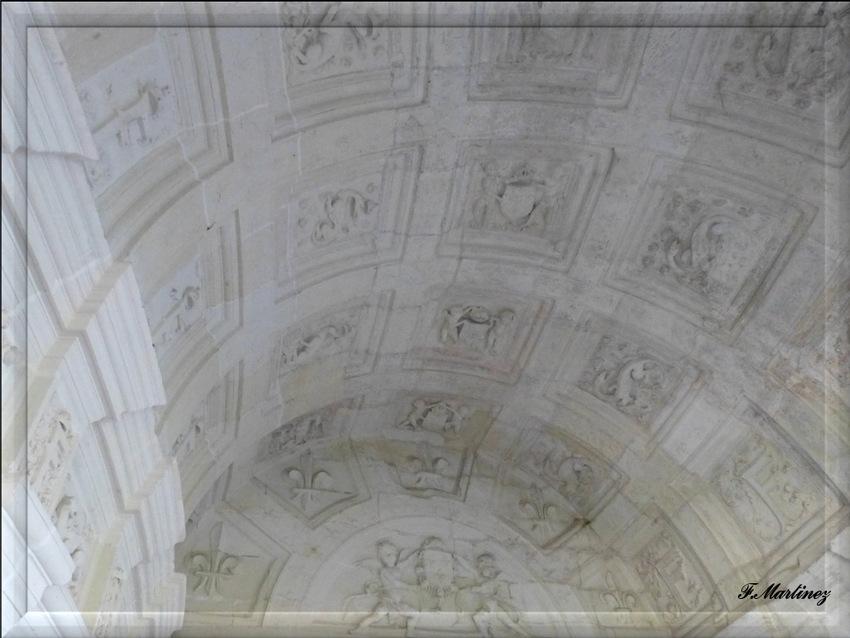 Les voûtes en caisson du deuxième étage où alternent Salamandres et le glyphe de François 1er.