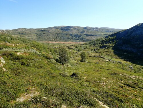 J4 - Hardangervidda : la Veig