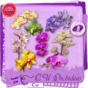 """CU """"Orchidées"""""""