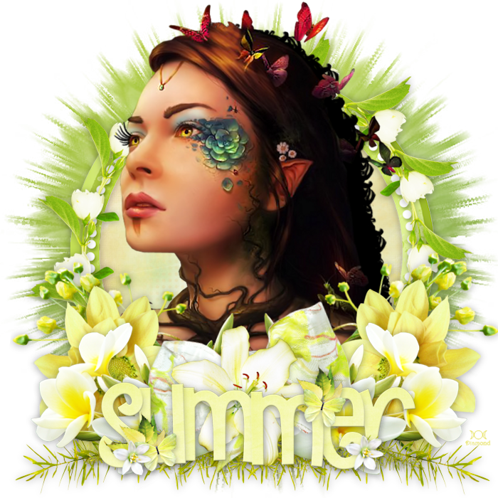 "Tutoril ""Summer is coming"" de Chrisje traduit chez Delire2scrap"