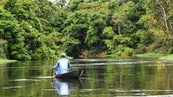 Synode Amazonie: le Pape nomme les présidents délégués de l'assemblée