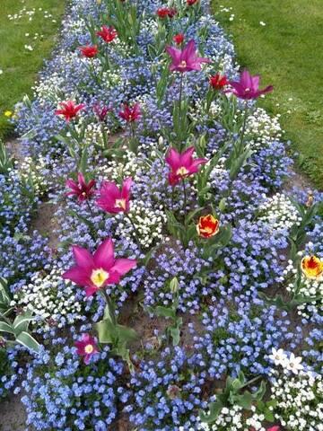 Bruges : des fleurs et des gâteaux