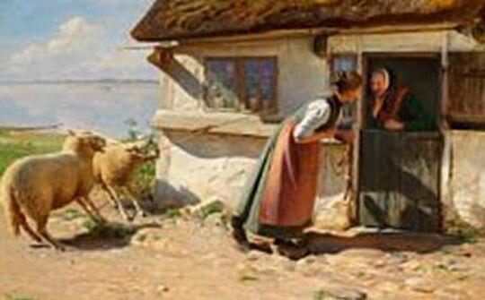 Hans Ole Brasen