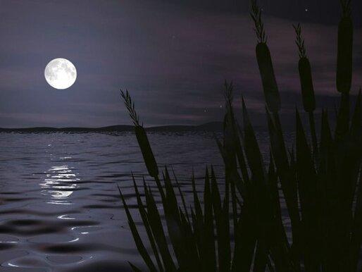 Blog de colinearcenciel : BIENVENUE DANS MON MONDE MUSICAL, Le Clair de Lune de Ludwig van BEETHOVEN