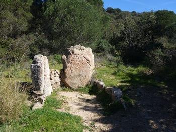 """Les restes du """"dolmen"""" de la Briande"""