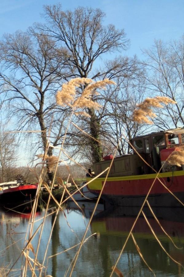 T4 - Bord du canal