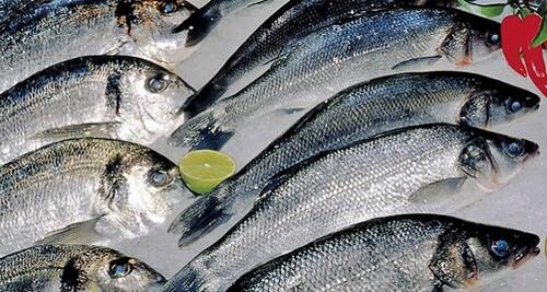 Fraude alimentaire : Le poisson, produit à risque