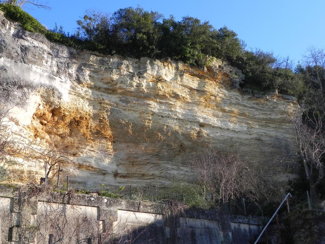 mes photos de ce matin en Nord Gironde