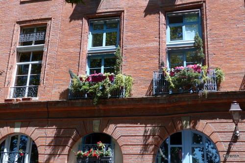 Toulouse : rues, porche et fenêtre fleurie ...
