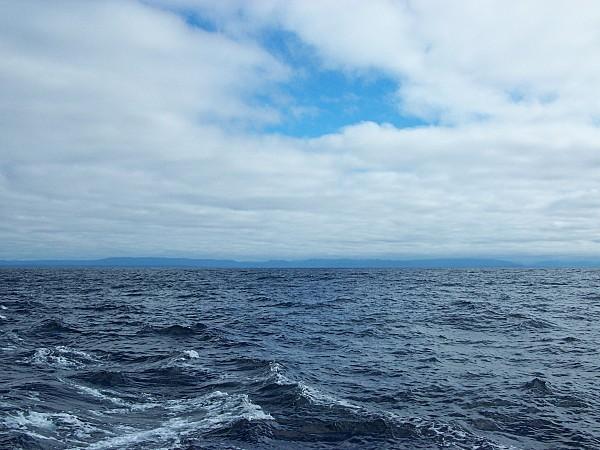 oceanos-2008-085.JPG