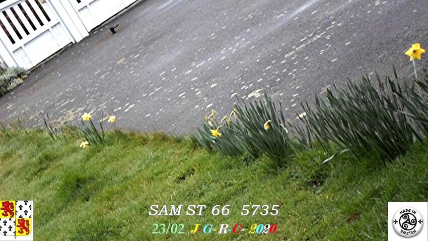 SAISON DE L'UNE A L'AUTRE: Hiver / Printemps   D   05/04/2020