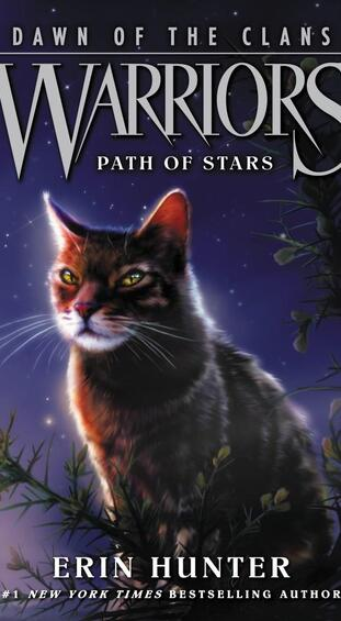 (Tome 6) Path of Stars