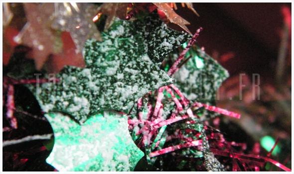 - Dans mon Cocon - Décembre & ses illuminations