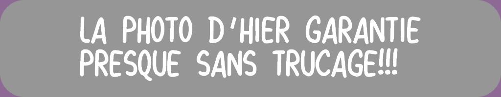 PHOTO D'HIER ET HERBIER 4 ° PAGE
