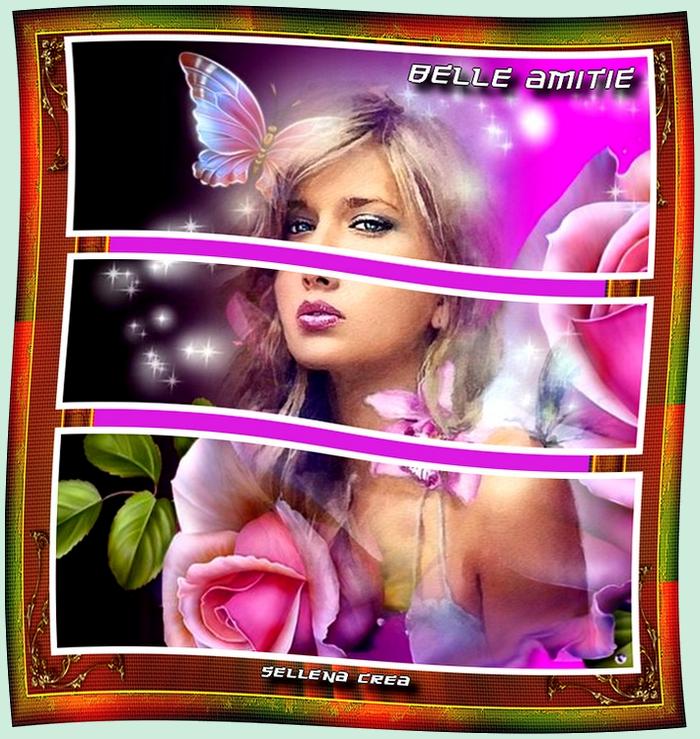**Belle Amitié**Cartes