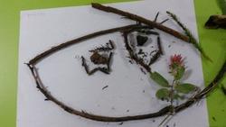 Maternelle Les Myosotis - Plaine des Palmistes