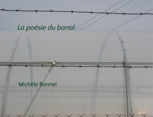 03 - La poésie du banal