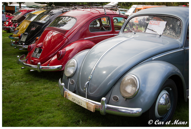 Meeting des Roswell's - Vihiers 2014