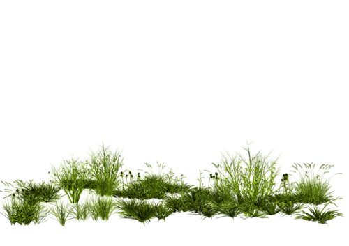 Verdure Série 5