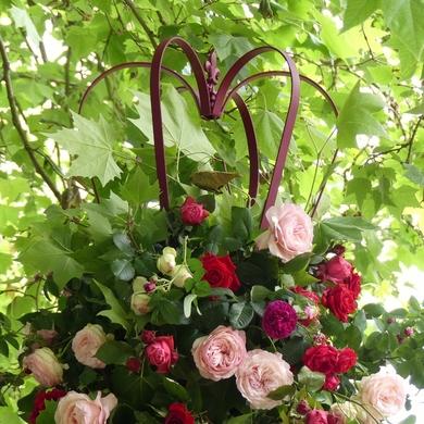 Les Journées de la Rose de l'abbaye de Chaalis : une édition princière...