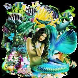 Sirène d'amour (code inclu)