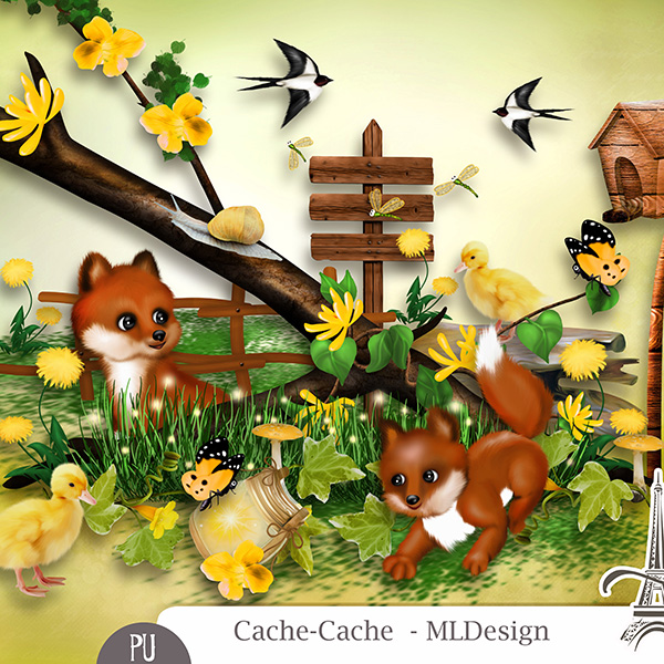 Cache-Cache by MLDesign