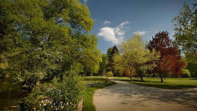 """Résultat de recherche d'images pour """"parc nature azay le rideau"""""""
