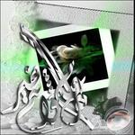 بطاقات تهنئة بالعيد