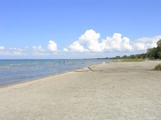 Wassaga Beach