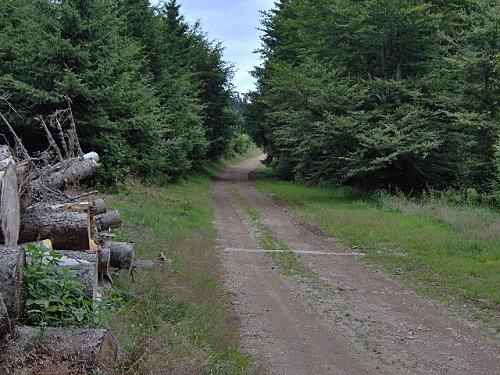 17juillet2008 col de st marie aux mines 078