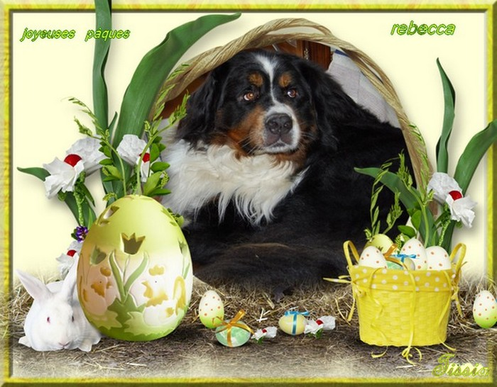 Joyeuses Pâques rebecca