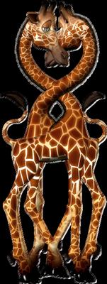 girafe,animaux,tubes.png