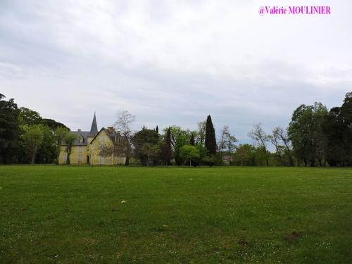 Saint-Vite : mes photos