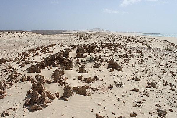 Boa Vista, l'île aux dunes17
